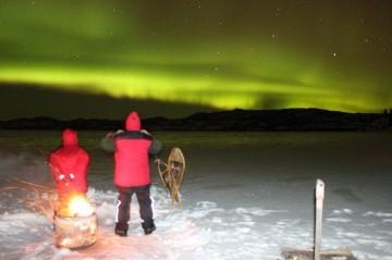 Aurora tour 228
